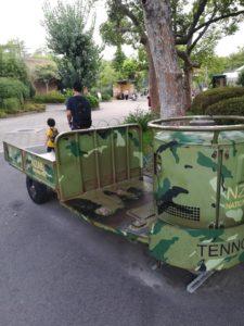 天王寺動物園内の迷彩の車