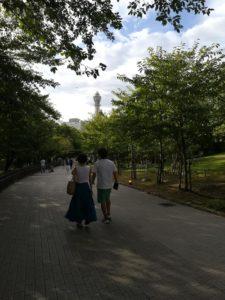天王寺動物園てんしばゲートから見る通天閣