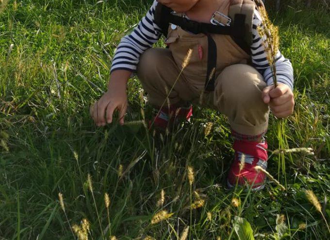 草原でしゃがむ子ども