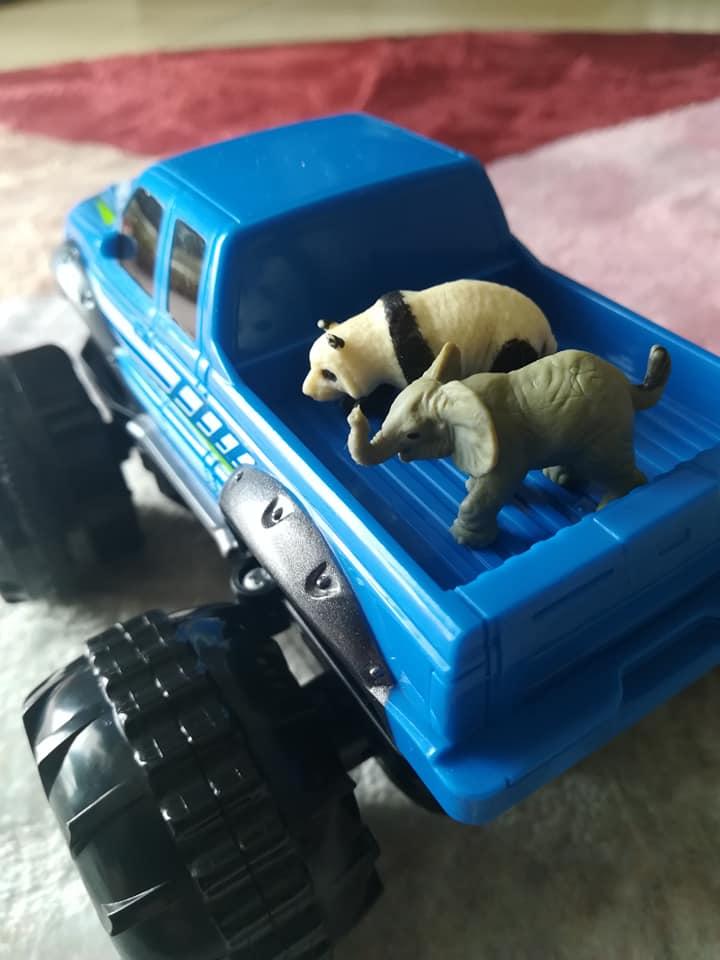 青いラジコンカーと動物