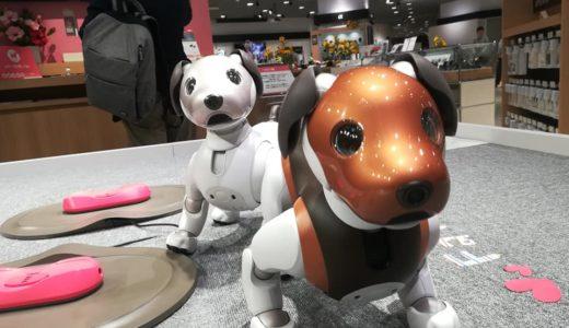 aiboに会いにソニーストア大阪へ行ってきました!!