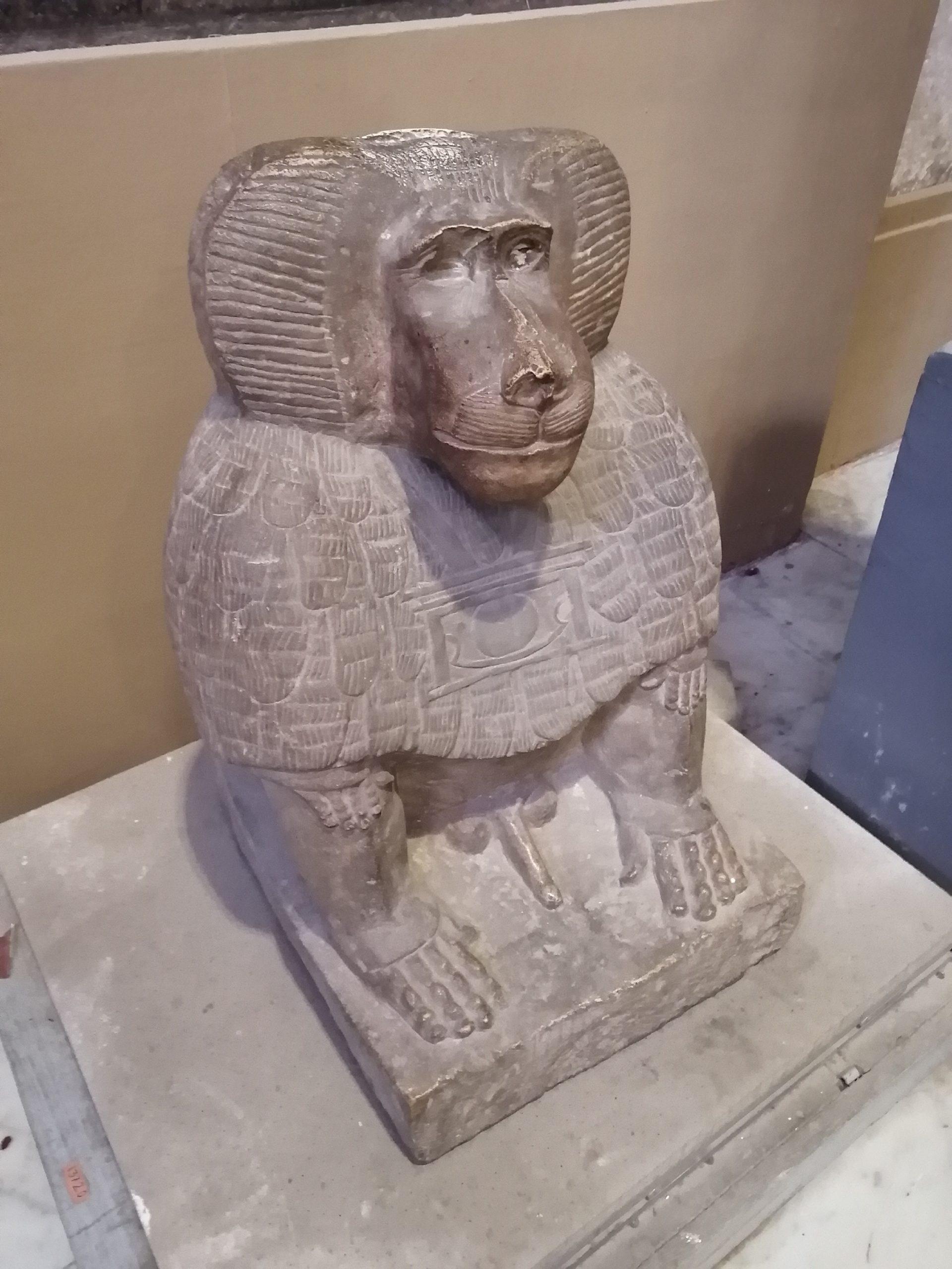 エジプト考古学博物館のおさるさん