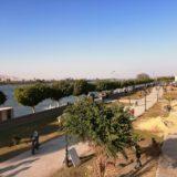 ナイル川沿いの遊歩道