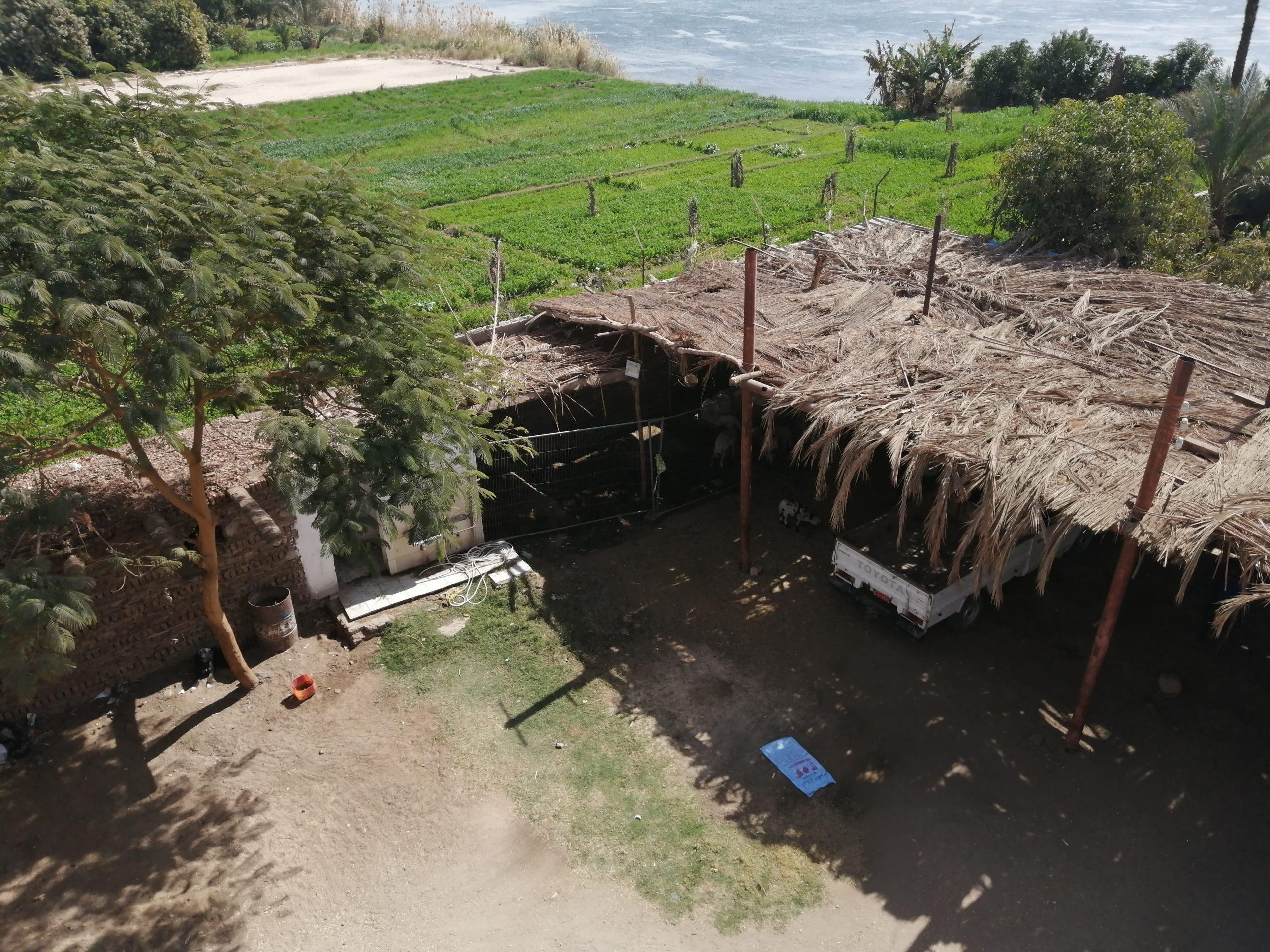 ナイル川沿いの家