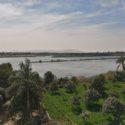 ナイル川沿い