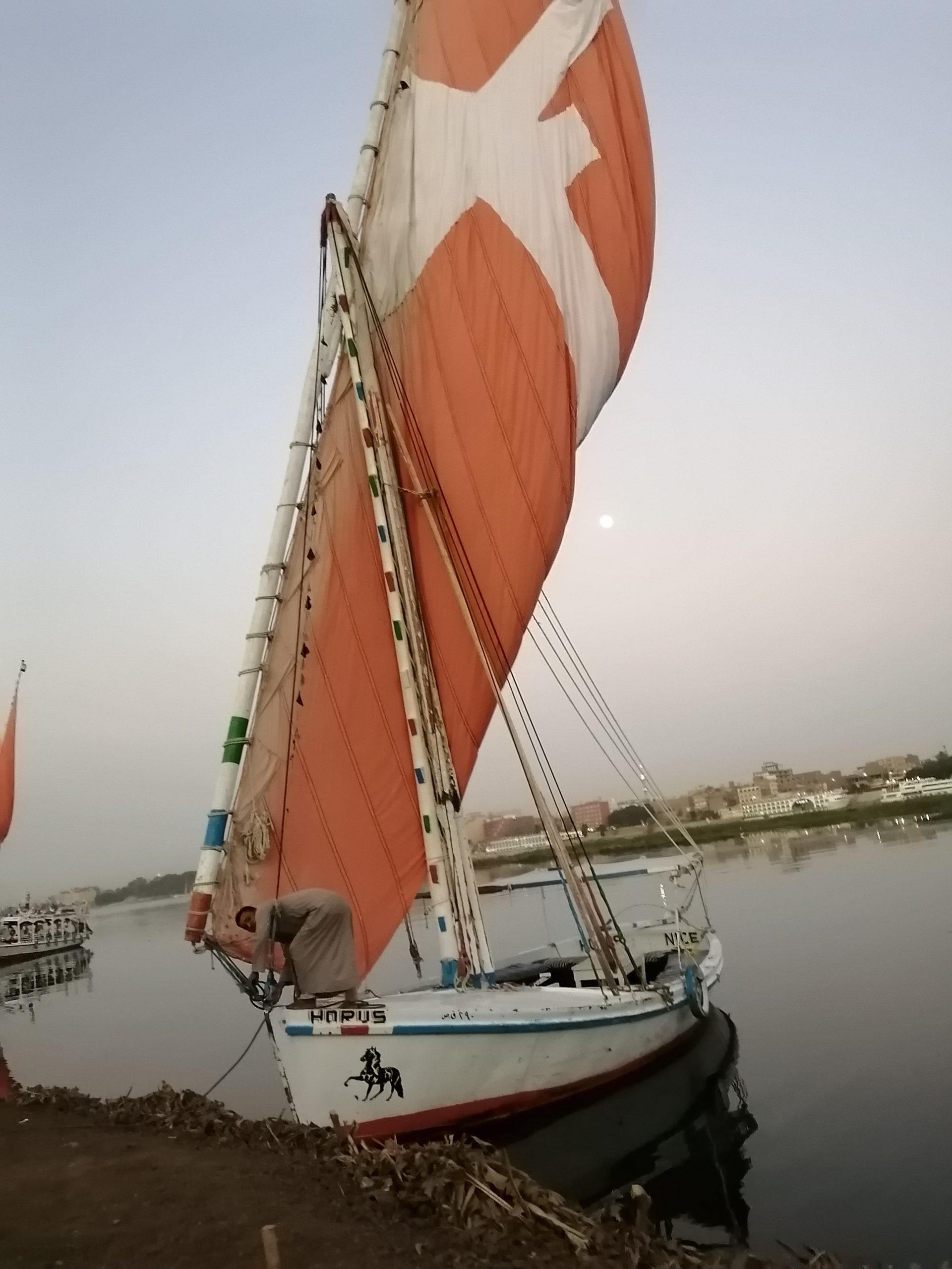 フェルーカ(帆船)