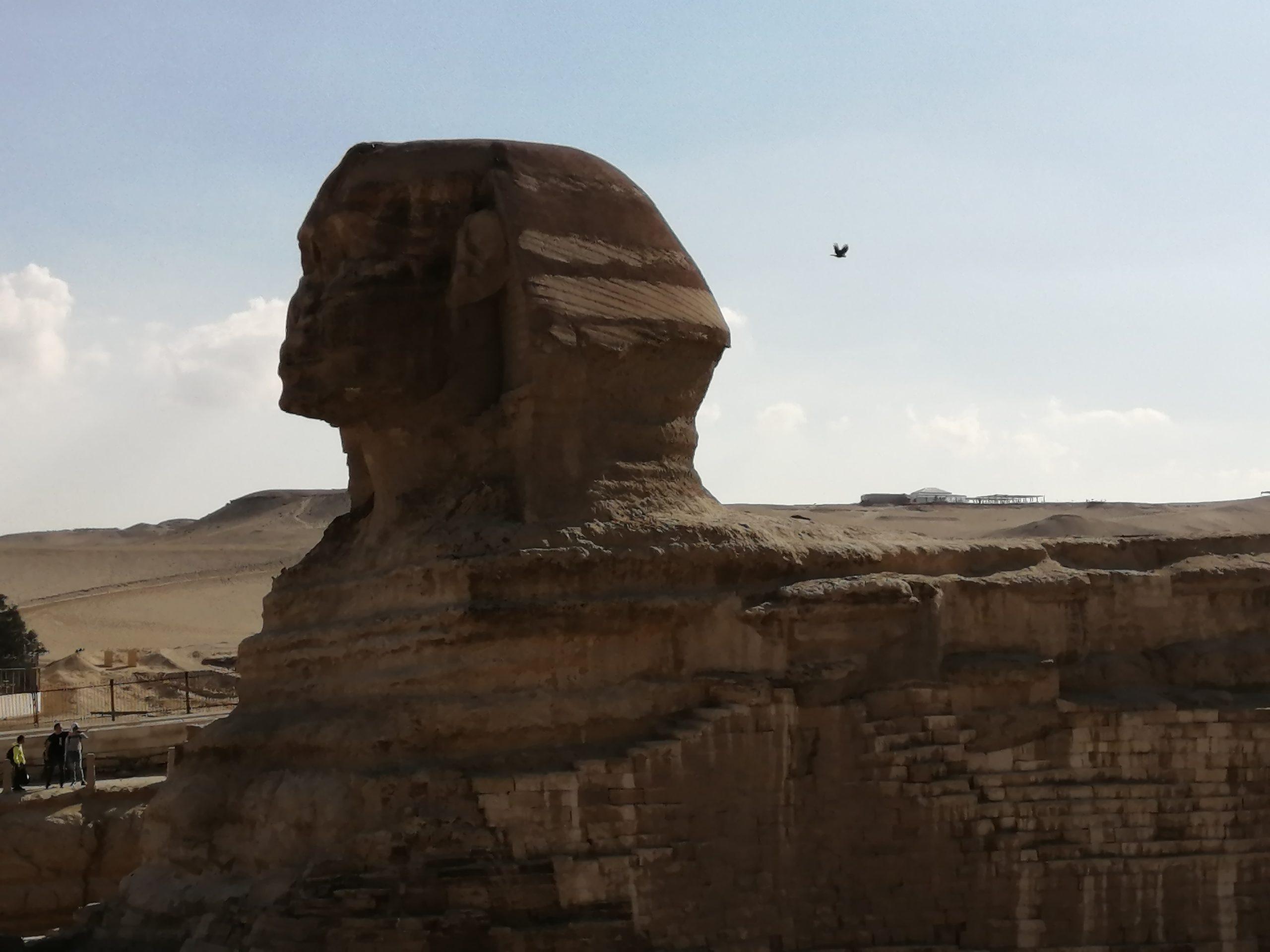 ギザのピラミッドのスフィンクス