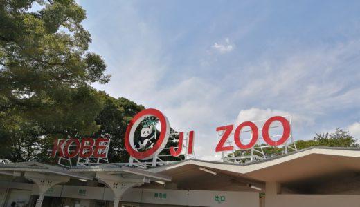 王子動物園はデートに良さそうなおしゃれな動物園でした