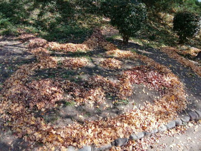 落ち葉のピカチュウ